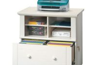 File Cabinet With Shelves Webfaceconsult pertaining to size 1000 X 1000
